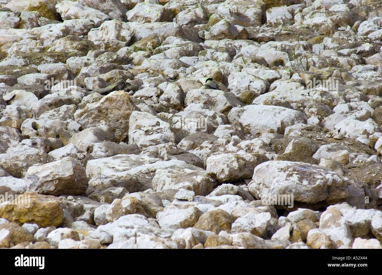 Rocce texture di sfondo pietre rocciose ciottoli Immagini Stock