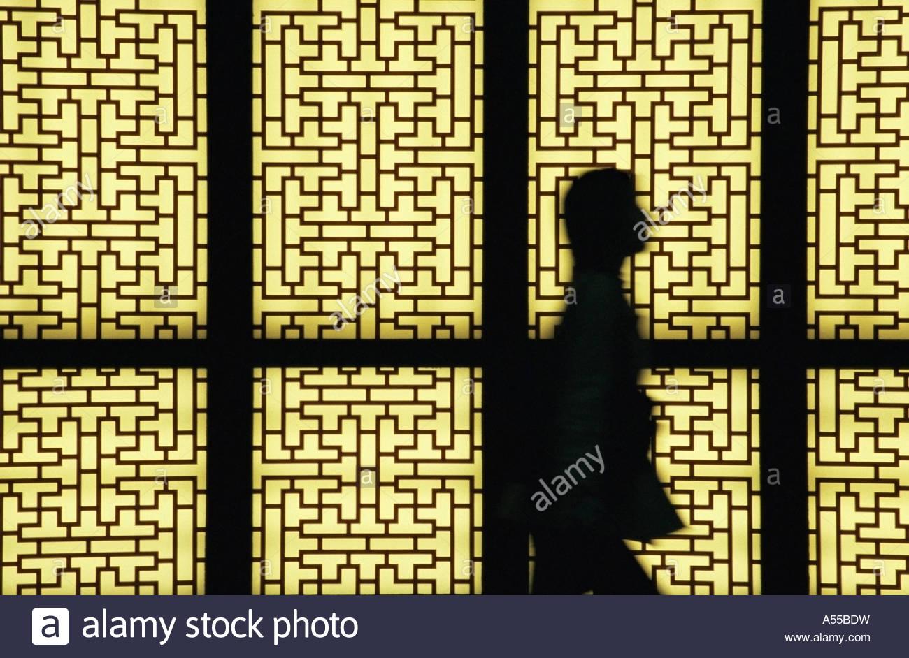 Stagliano persona contro le porte dello schermo Immagini Stock