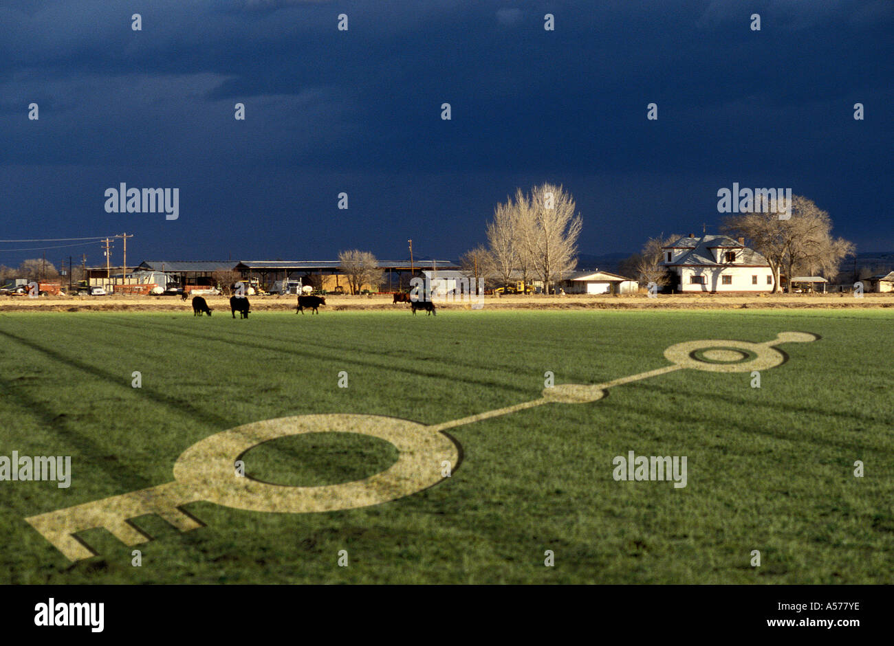 Crop Circle, Nuovo Messico Immagini Stock