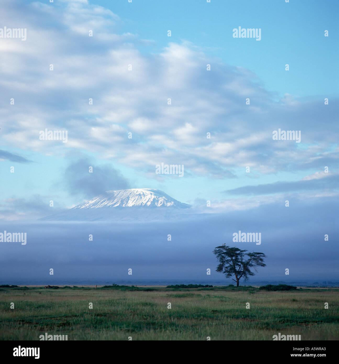 Snow capped picco del Monte Kilimanjaro all'alba da Amboseli Lodge, Amboseli National Park, Kenya, Africa orientale. Paesaggio africano Immagini Stock
