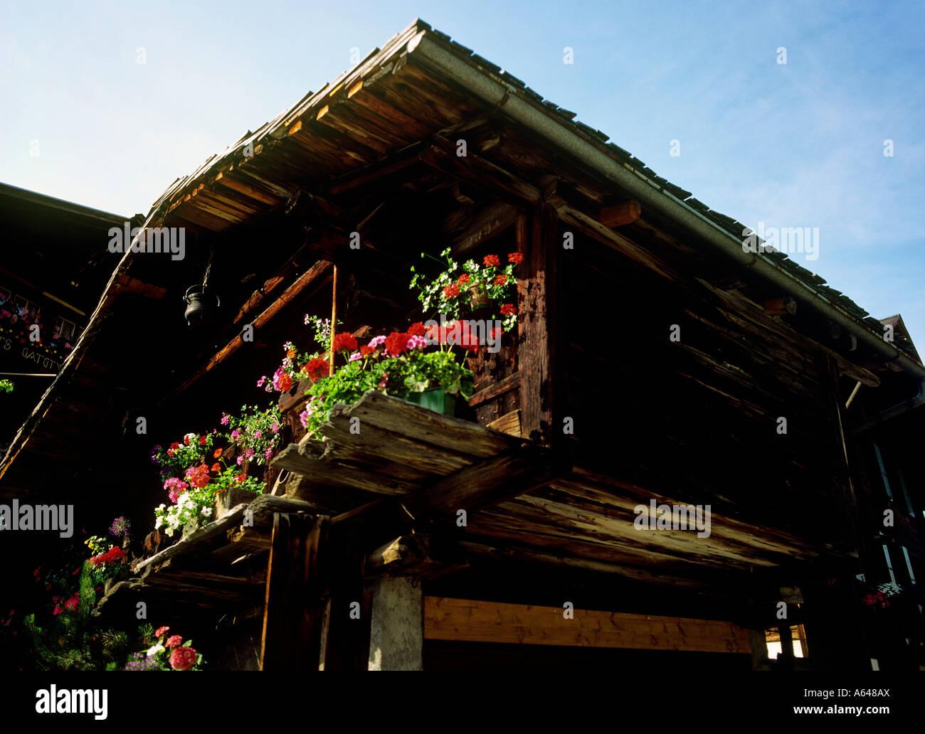 Tradizionale ornato di fiori sparso villaggio della regione murren di Altopiano bernese swiss alpes cantone di Berna Foto Stock