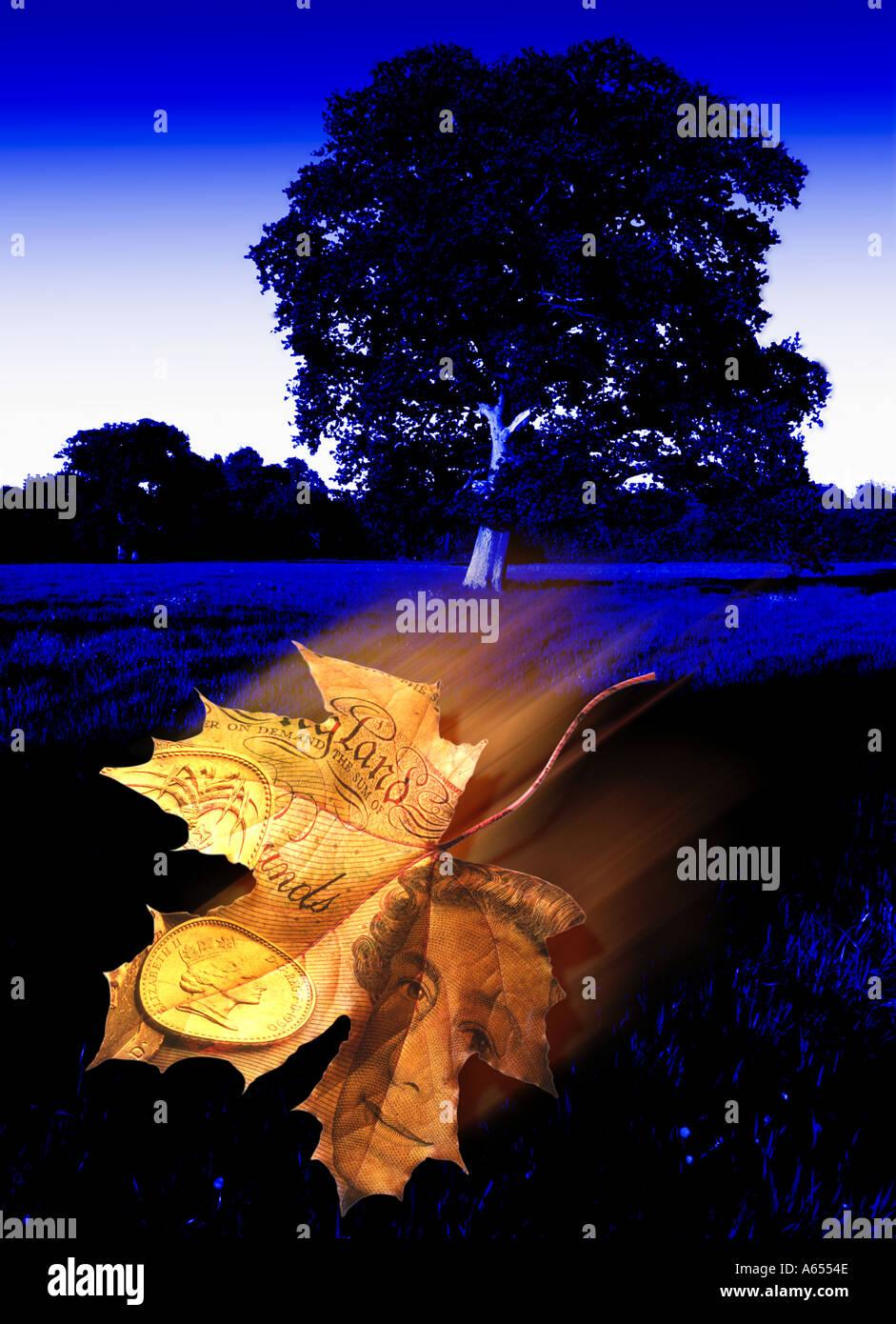 Il denaro cresce sugli alberi concetto astratto di effetti speciali Immagini Stock