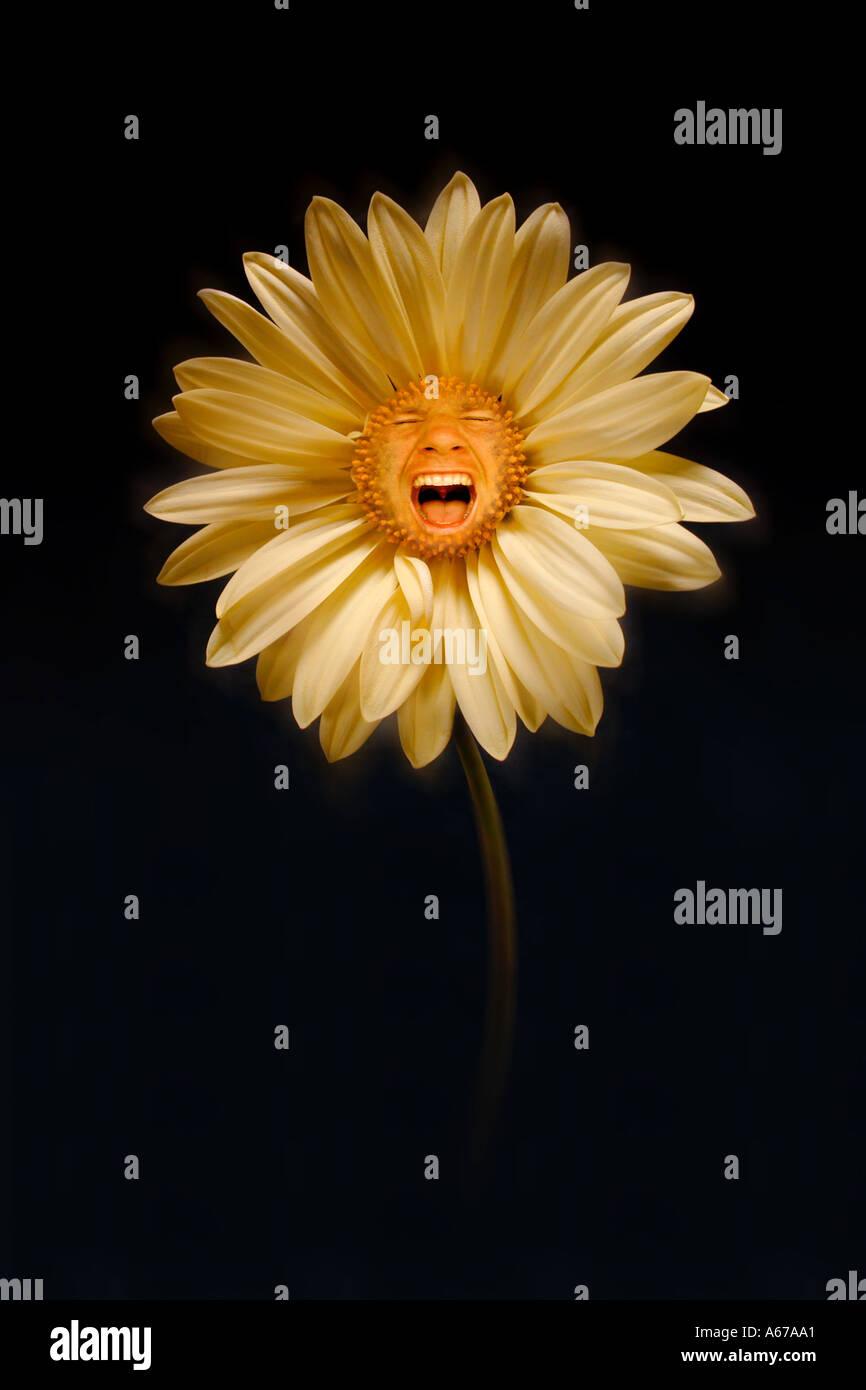 Urlando concetto del fiore Immagini Stock