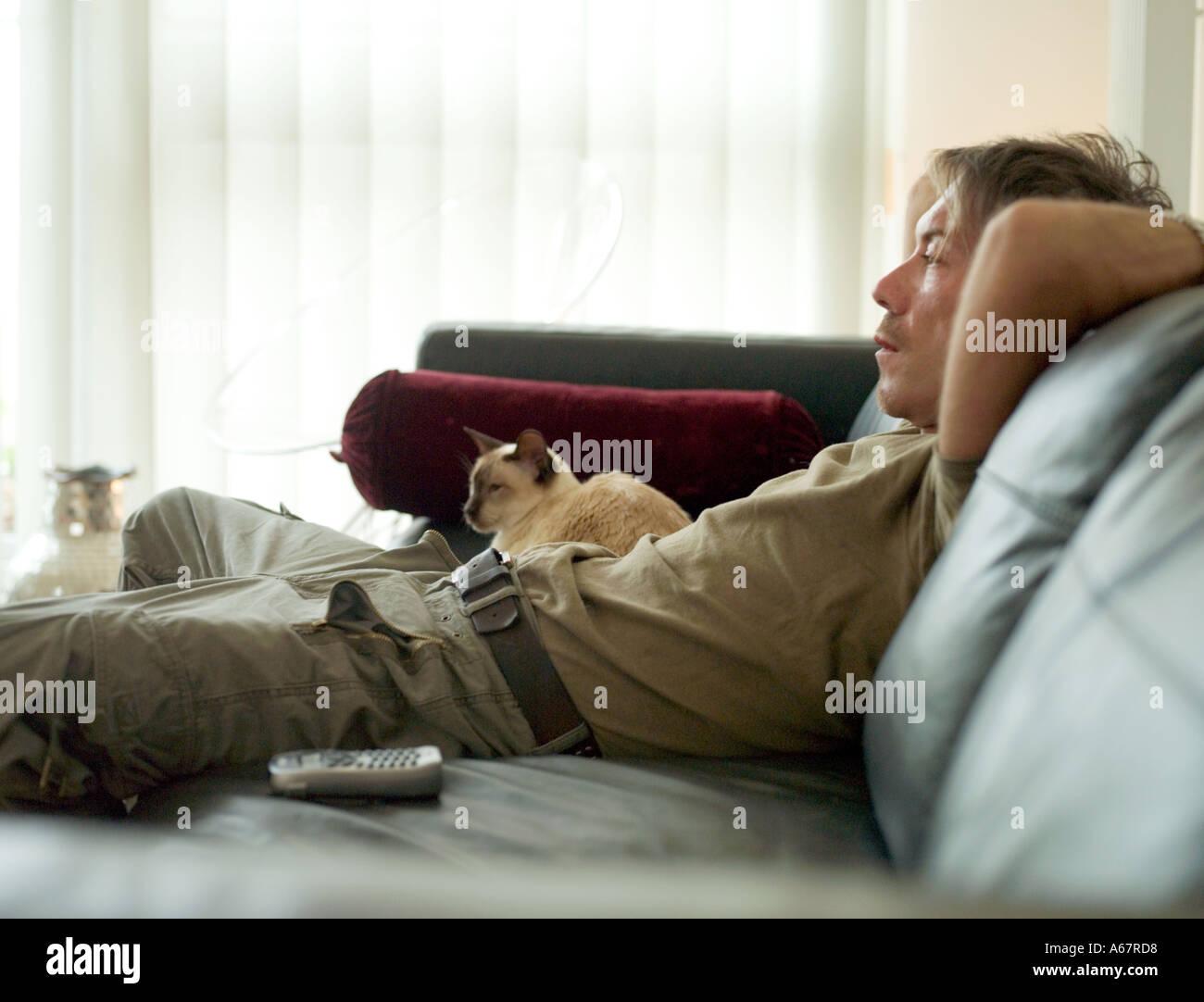 40 s rilassante maschio sul divano con gatto siamese gatto Immagini Stock
