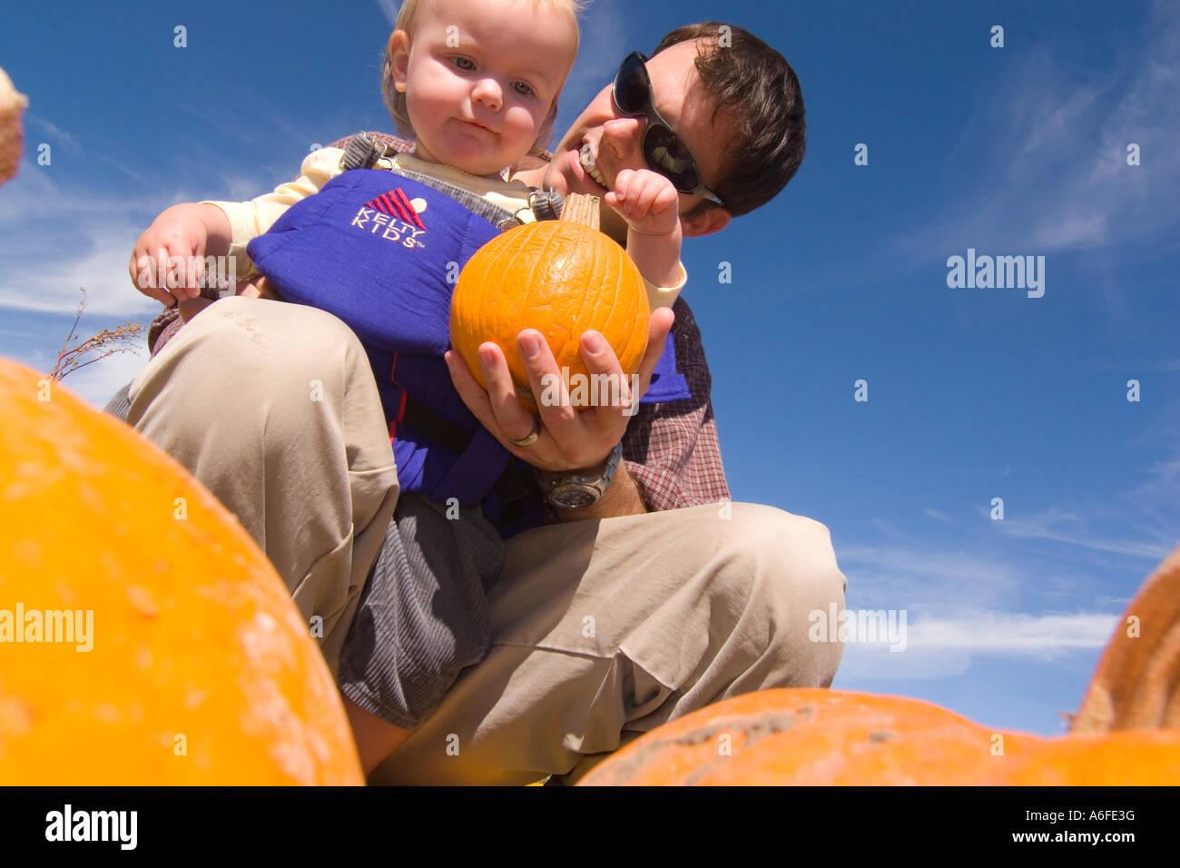Un padre e figlia in un orto di zucche in Fallon Nevada Immagini Stock