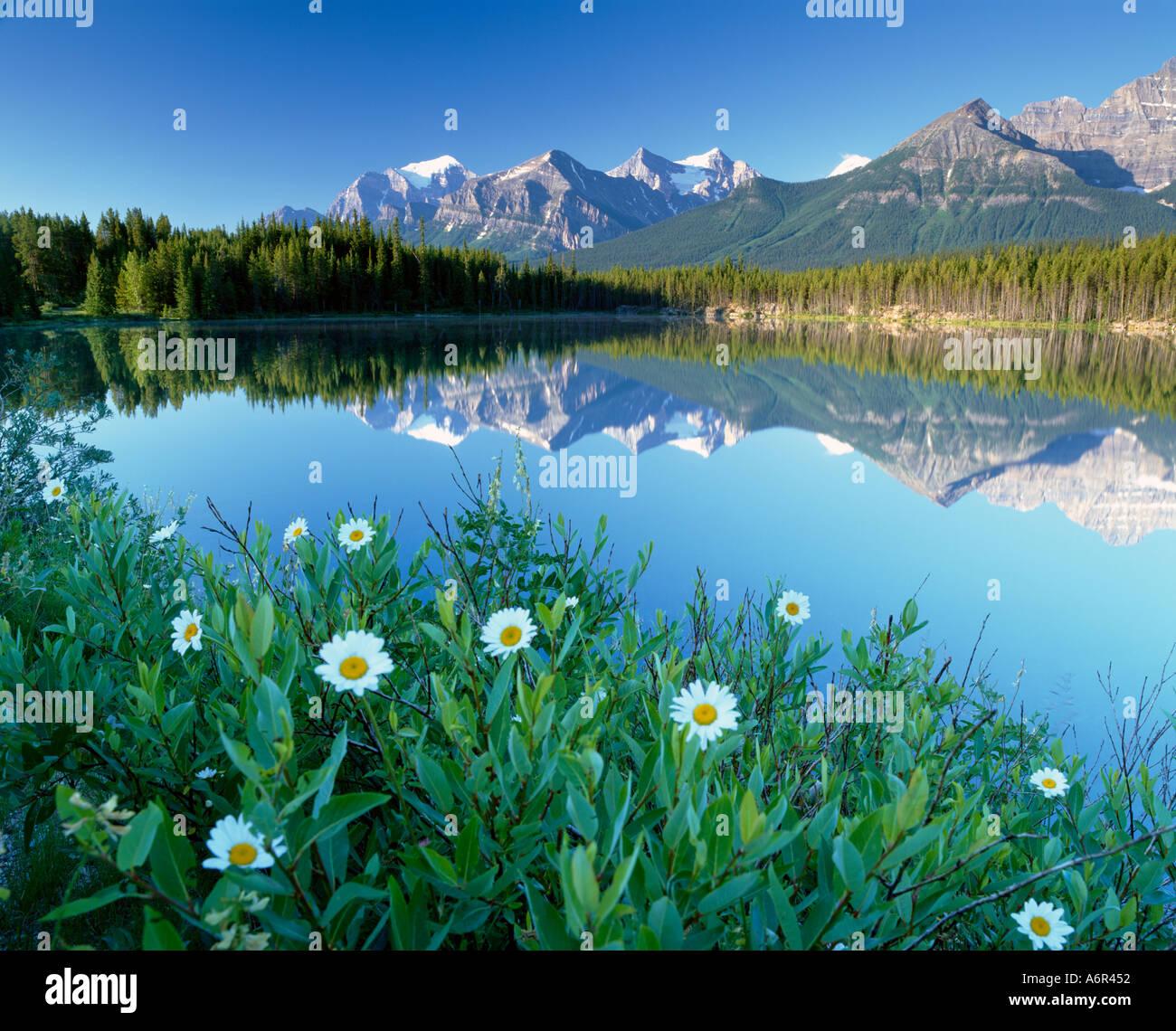 Herbert Lago di Banff National Pak Canadian Rockies Canada Immagini Stock