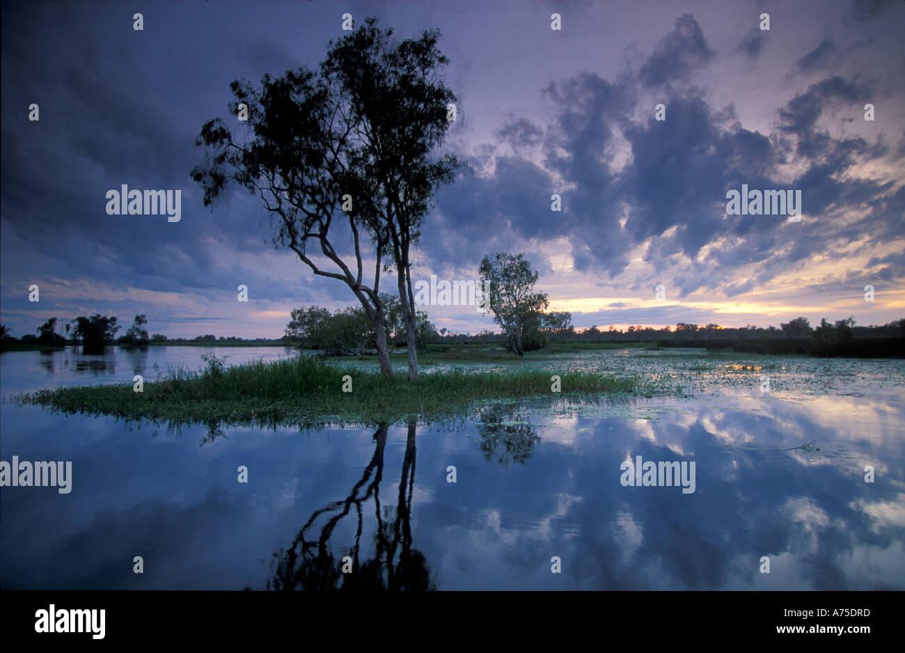 Acque Gialle all'alba Kadadu Parco Nazionale di Territori del Nord Australia Immagini Stock