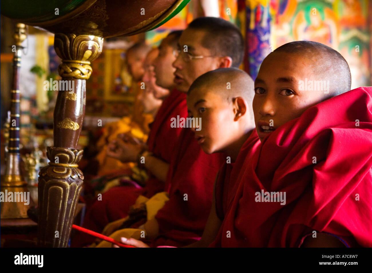 Giovani monaci e monaci dell Ordine Gelupa durante la puja - Likir Gompa - Ladakh - Himalaya indiano Immagini Stock