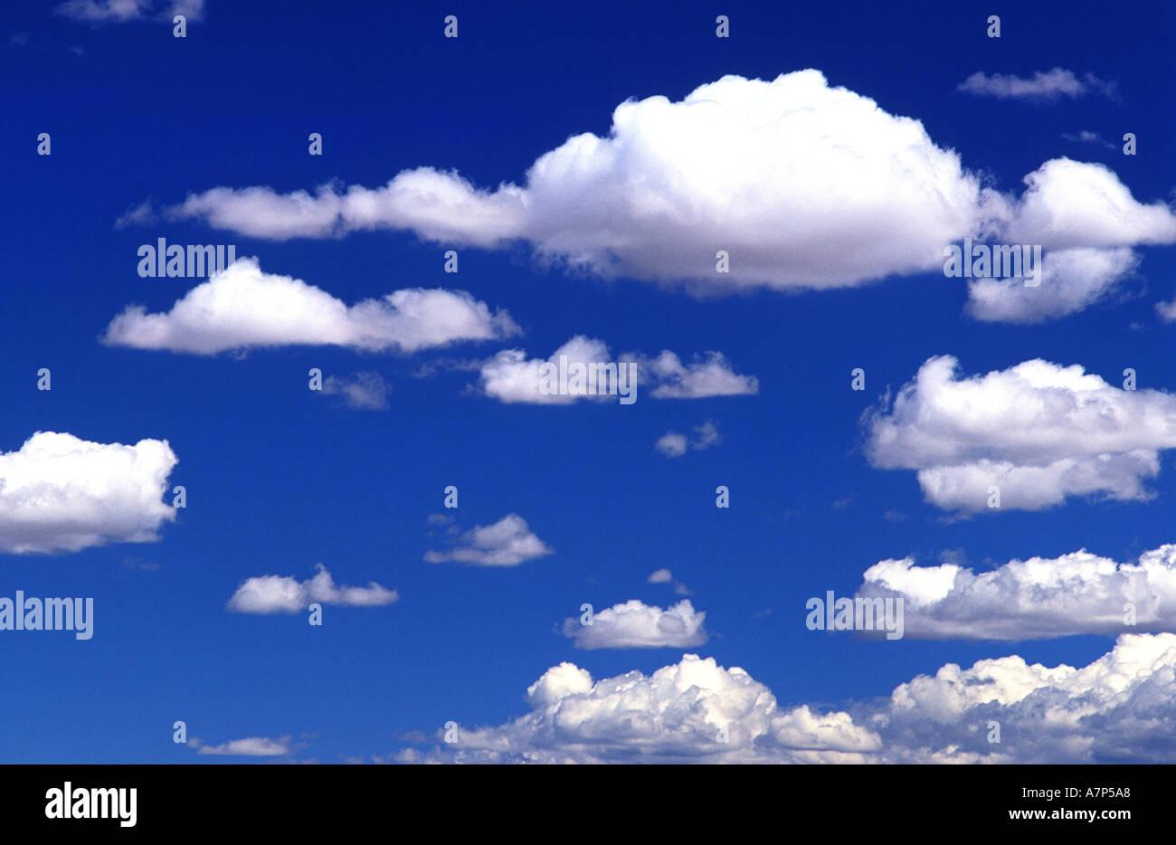 Cumulus nubi in un cielo blu Immagini Stock