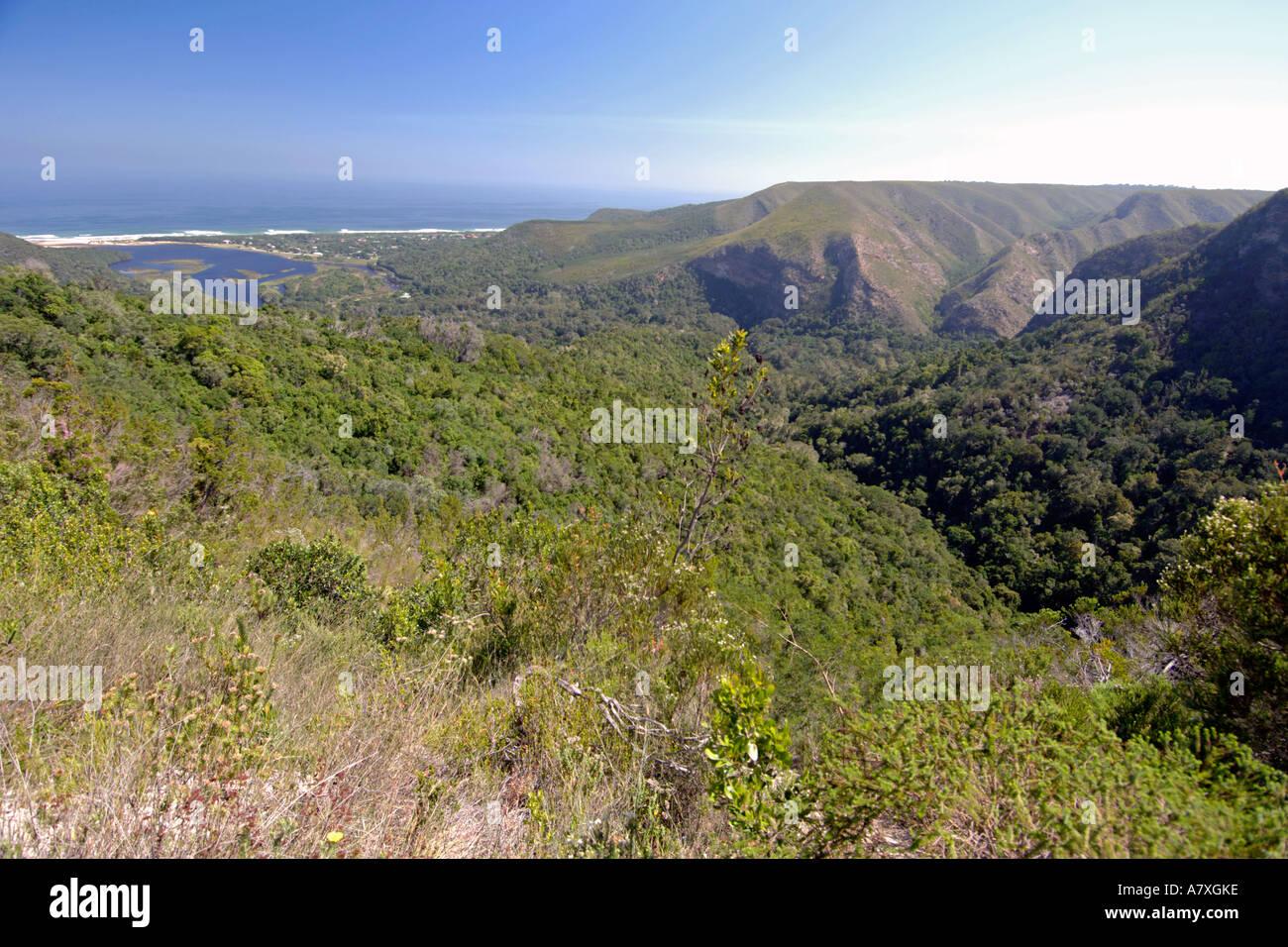 Una vista panoramica della natura di valle lungo la Garden Route del Sud Africa. Immagini Stock