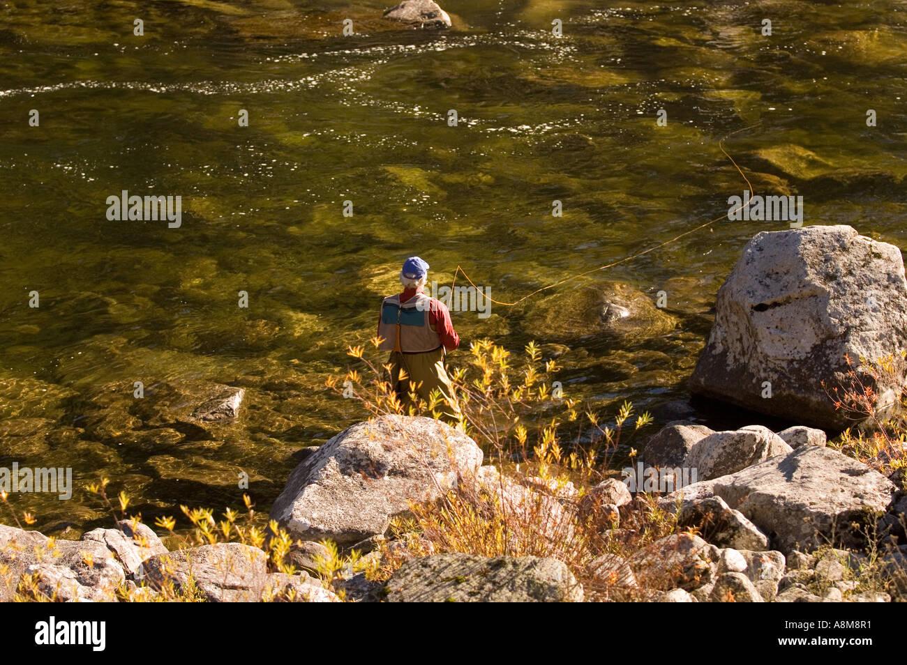 IDAHO CLEARWATER National Forest caduta scenic del pescatore a mosca colata per la trota di fiume Locksa MR Immagini Stock