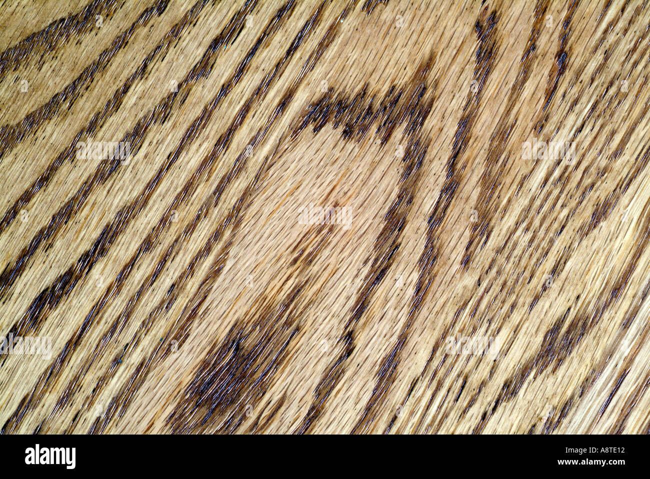 Venatura del legno Foto Stock