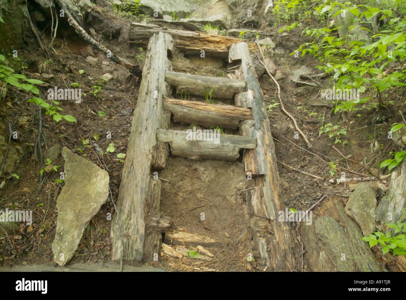 Appalachian Trail - un sentiero sulla scaletta Wildcat Ridge Trail che ha bisogno di essere riparato White Mountains Immagini Stock