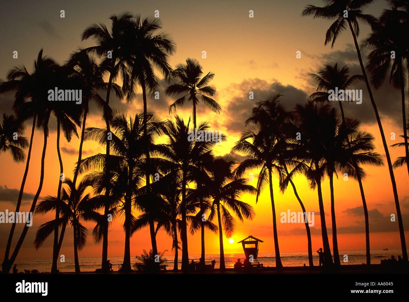 Tramonto sulla spiaggia di Waikiki di Oahu Waikiki Hawaii USA Immagini Stock