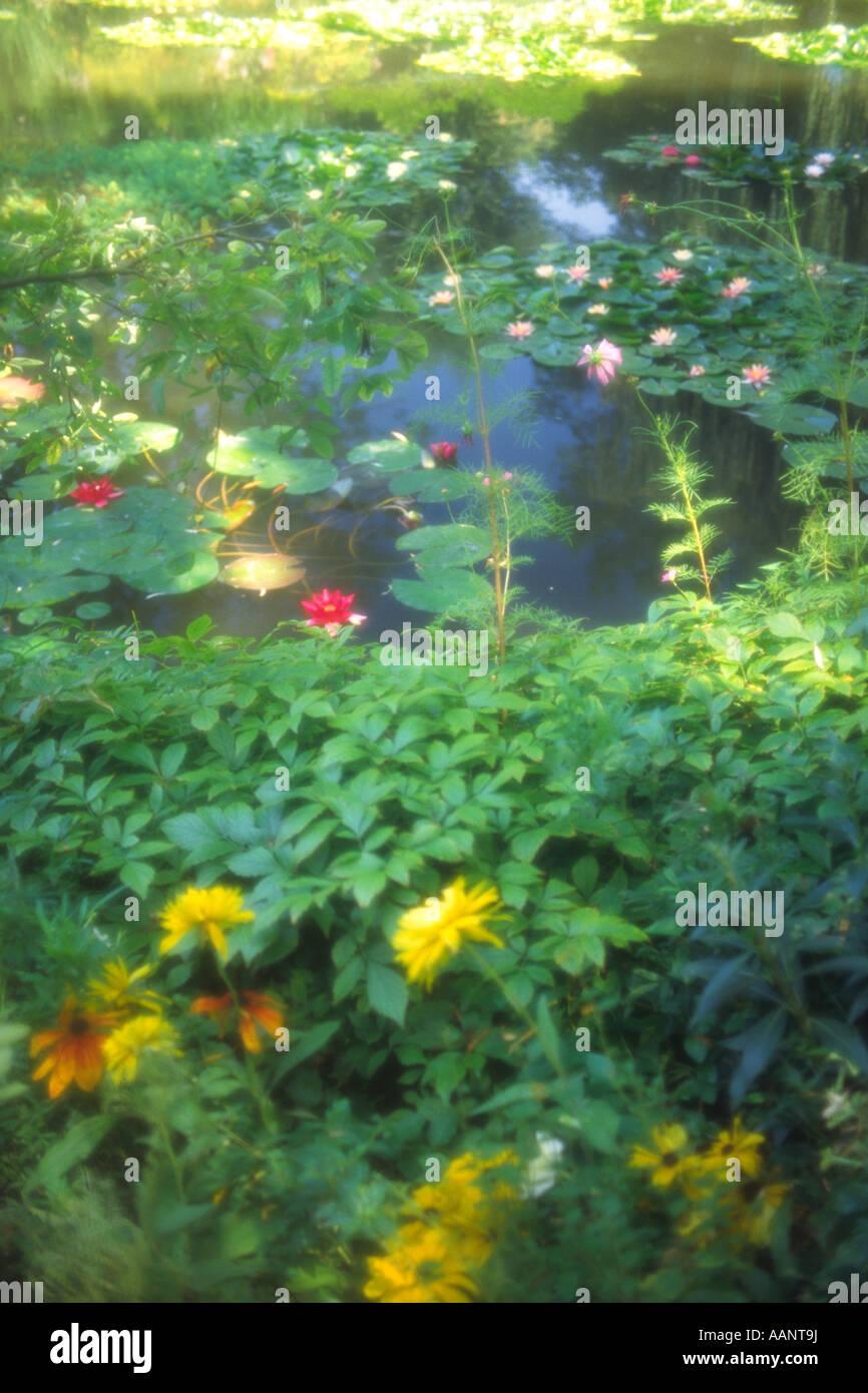 Monet, giardino di Giverny, Normandia, Francia Immagini Stock