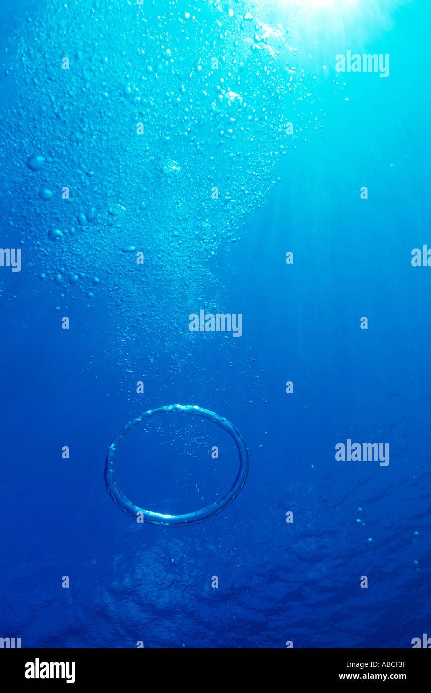 Le bolle di aria in mare Immagini Stock