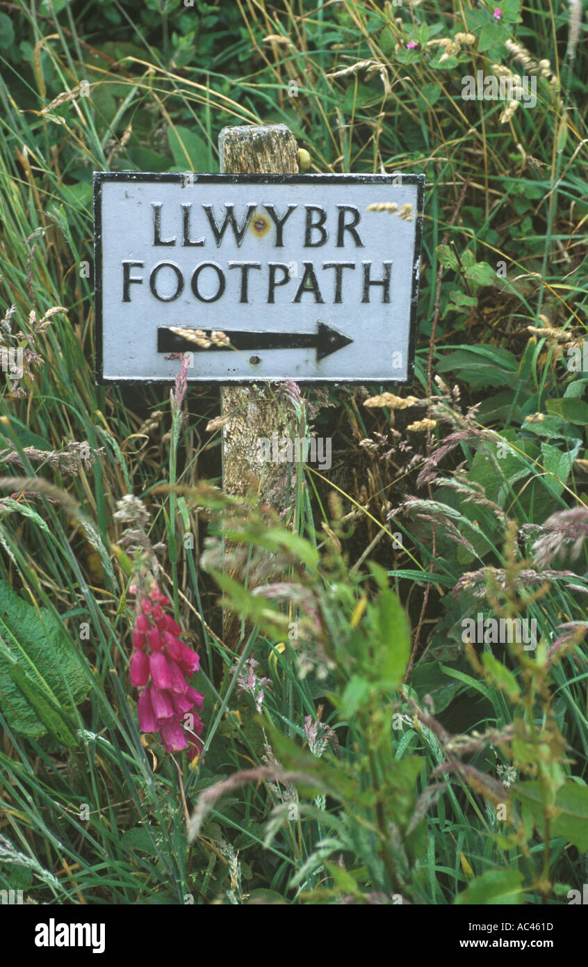 Siti di incontri gratuiti in Gwynedd