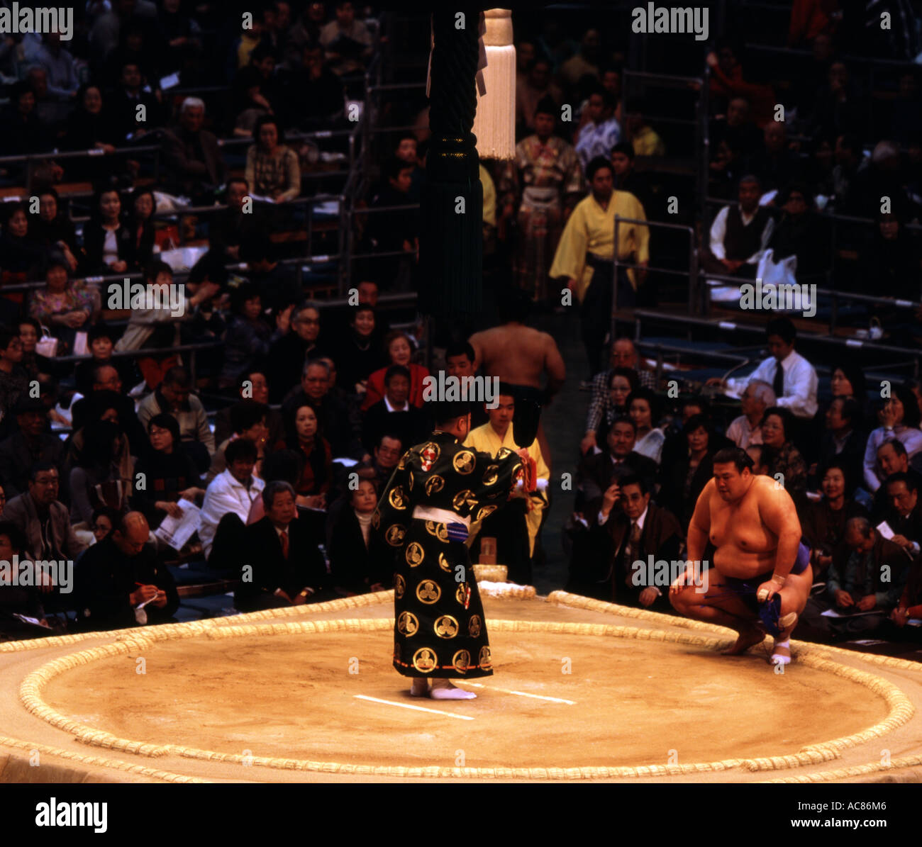 Giudice awards lottatore di sumo a Osaka Basho 2006 Immagini Stock