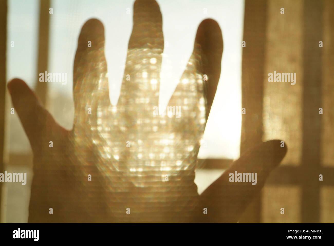 La mano e la luce del sole in un collage Immagini Stock