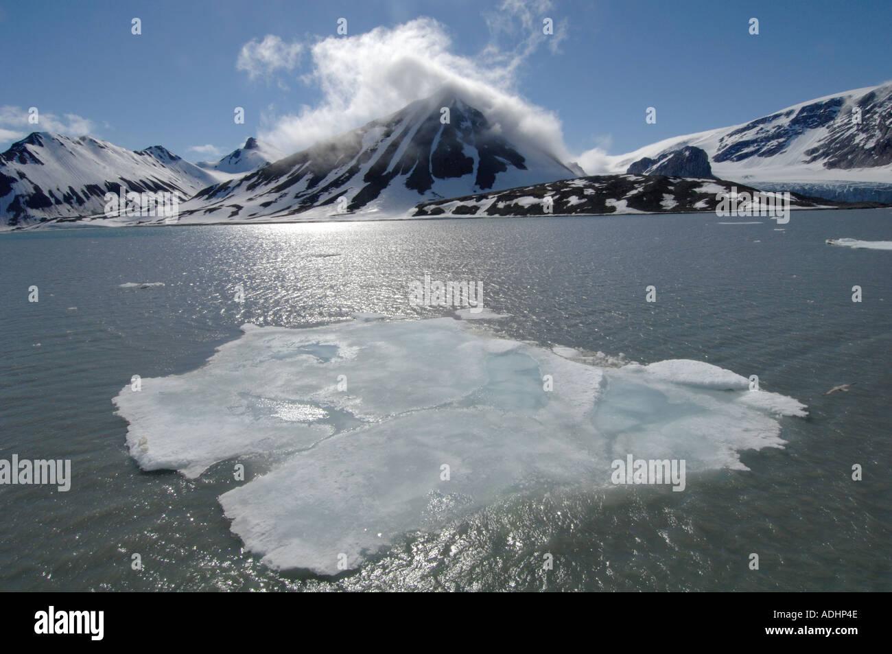 Spitsbergen in estate Immagini Stock