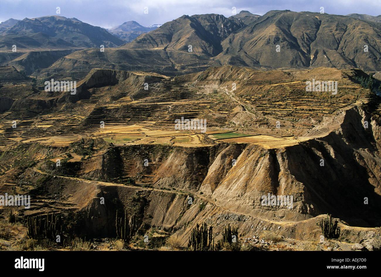 Contadino Inca Immagini   Contadino Inca Fotos Stock - Alamy dc8ac721e051