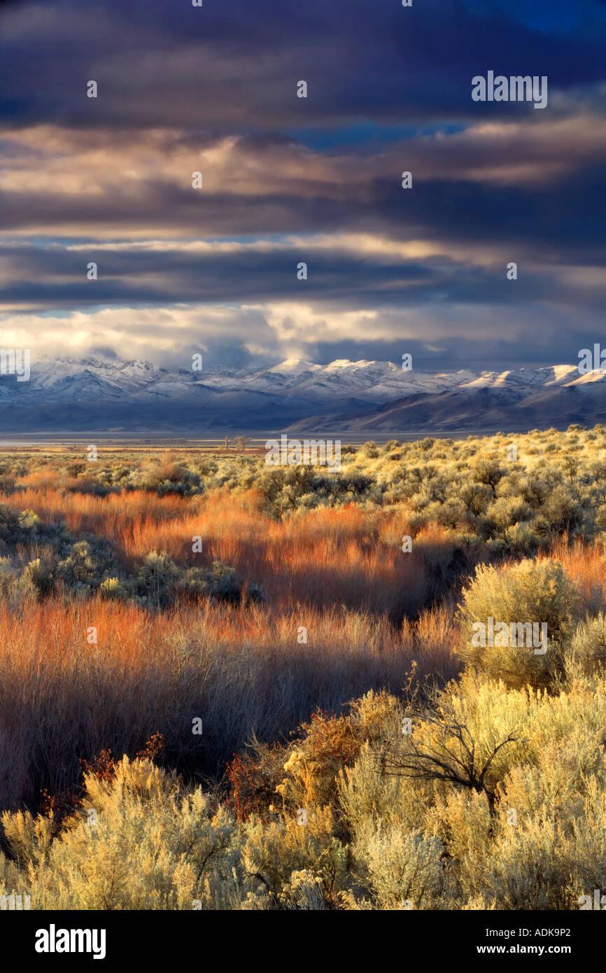 Alba sul Pueblo Mountaions con neve fresca Oregon Immagini Stock