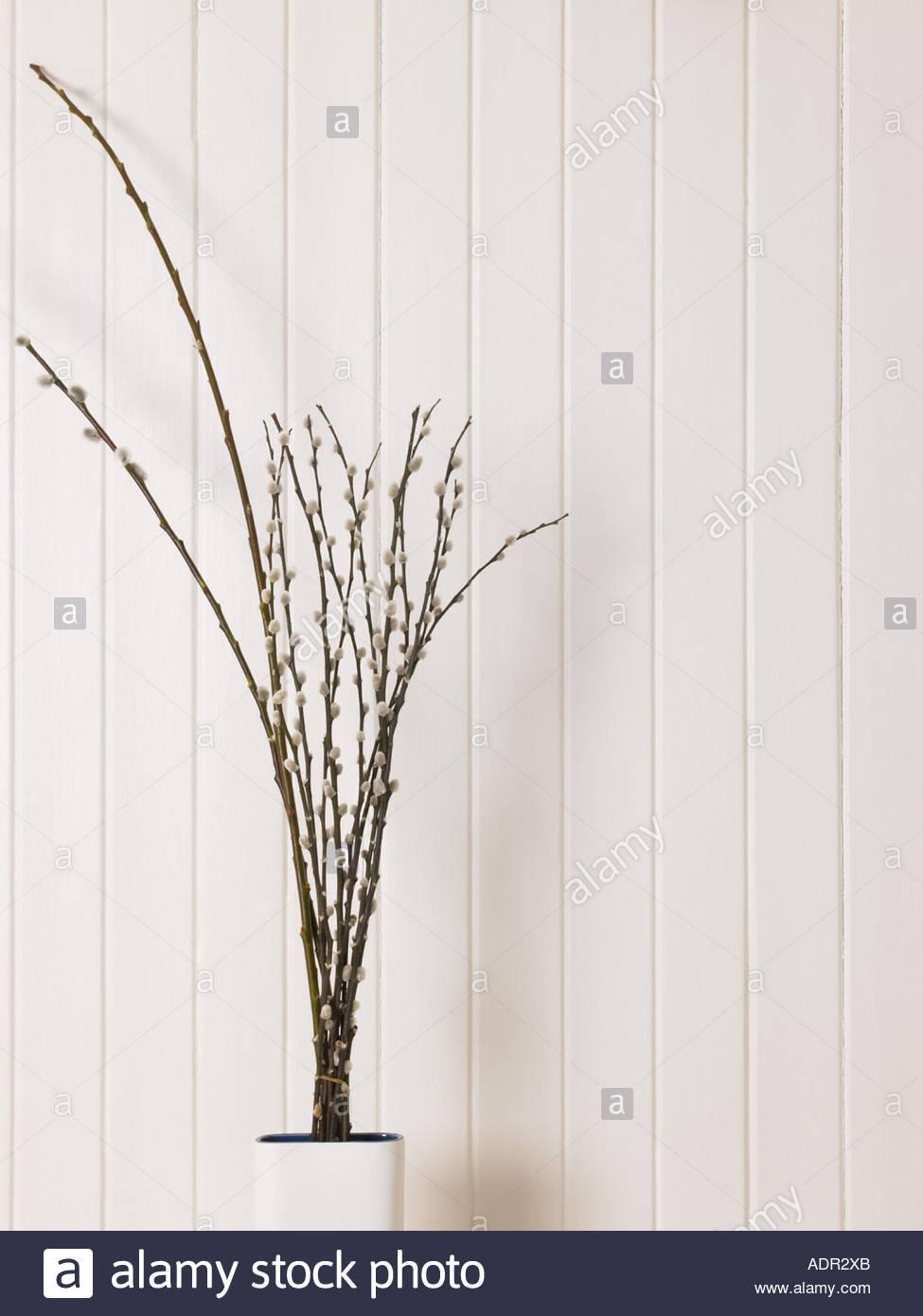 Ramoscelli decorativo in un vaso Immagini Stock