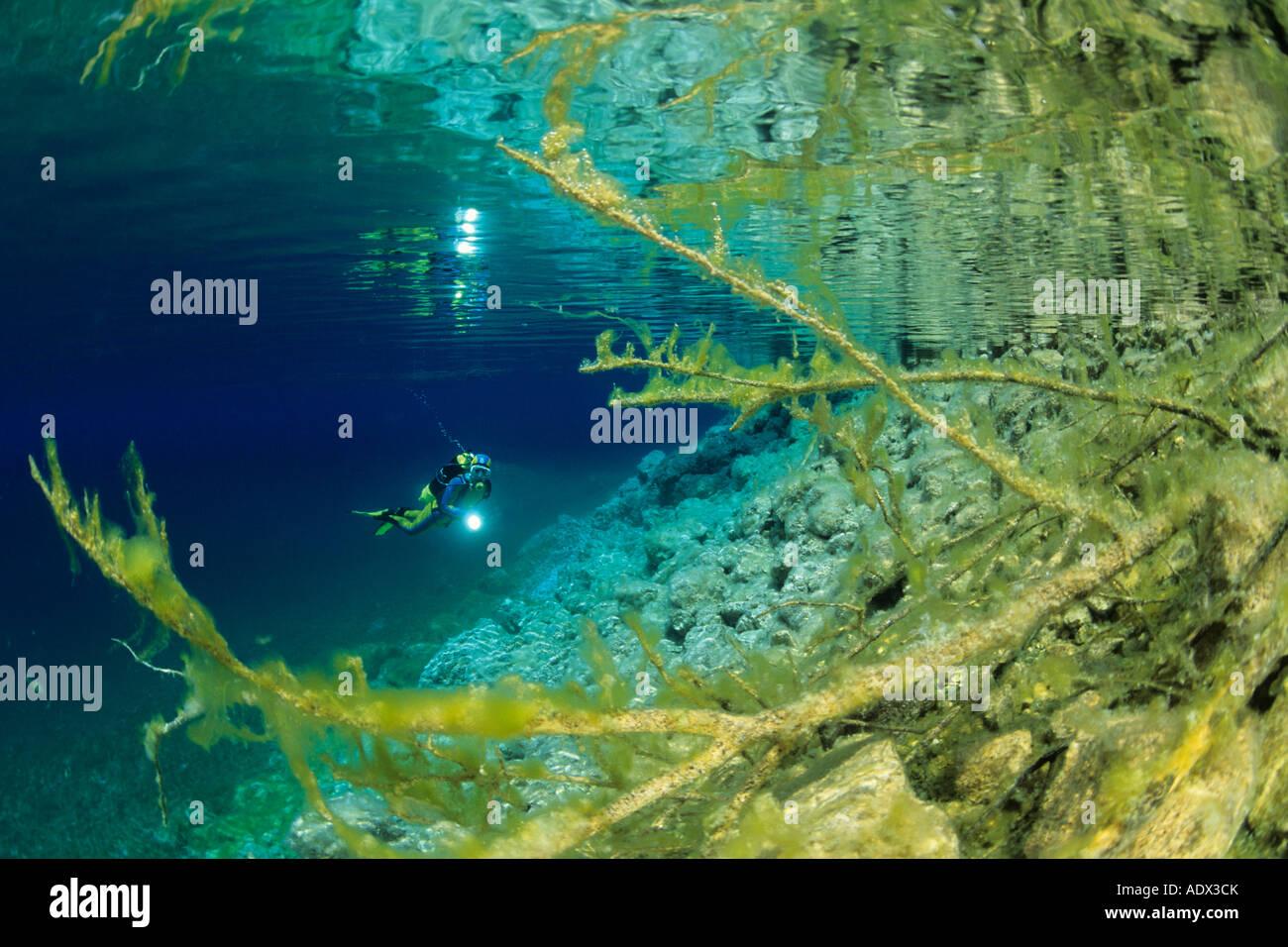 Subacqueo a Cornino Lago Friuli Italia Immagini Stock