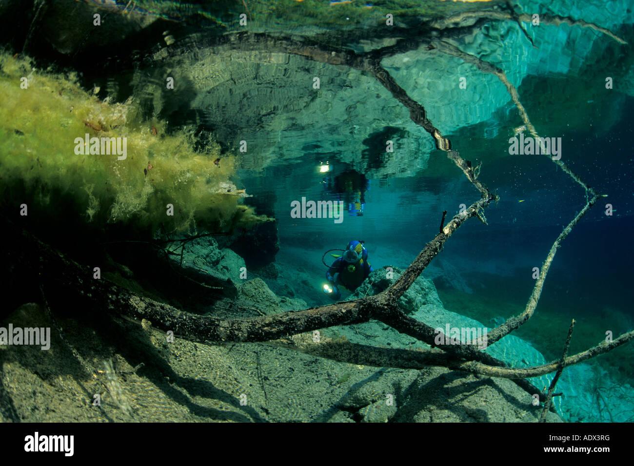 Subacqueo con rami di alberi di riflessione sul Lago di Cornino Friuli Italia Immagini Stock
