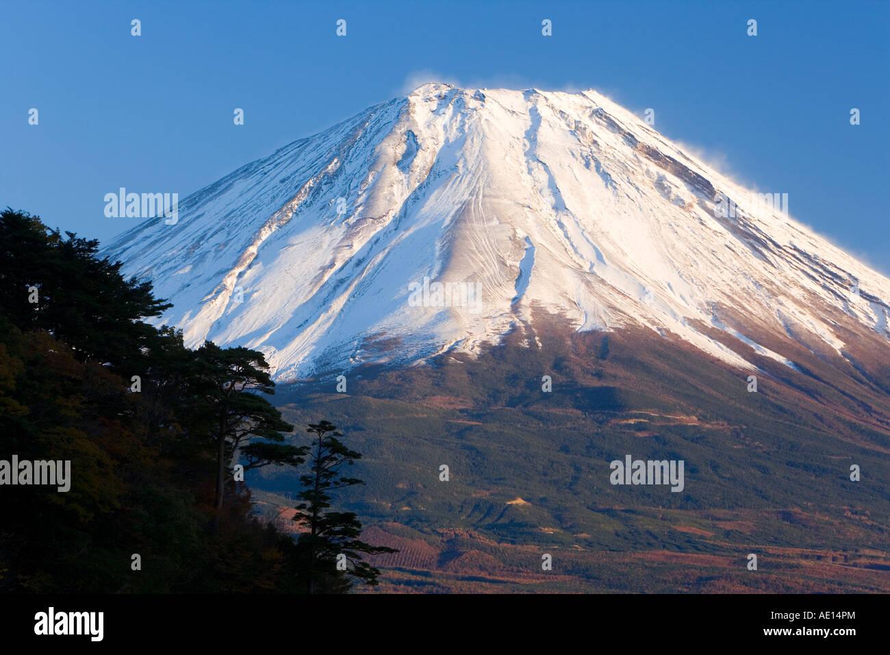 Giappone Honshu Fuji Hakone Izu Parco nazionale di Mount Fuji 3776m innevata e vista sul lago Shoji ko al Fuji andare Foto Stock
