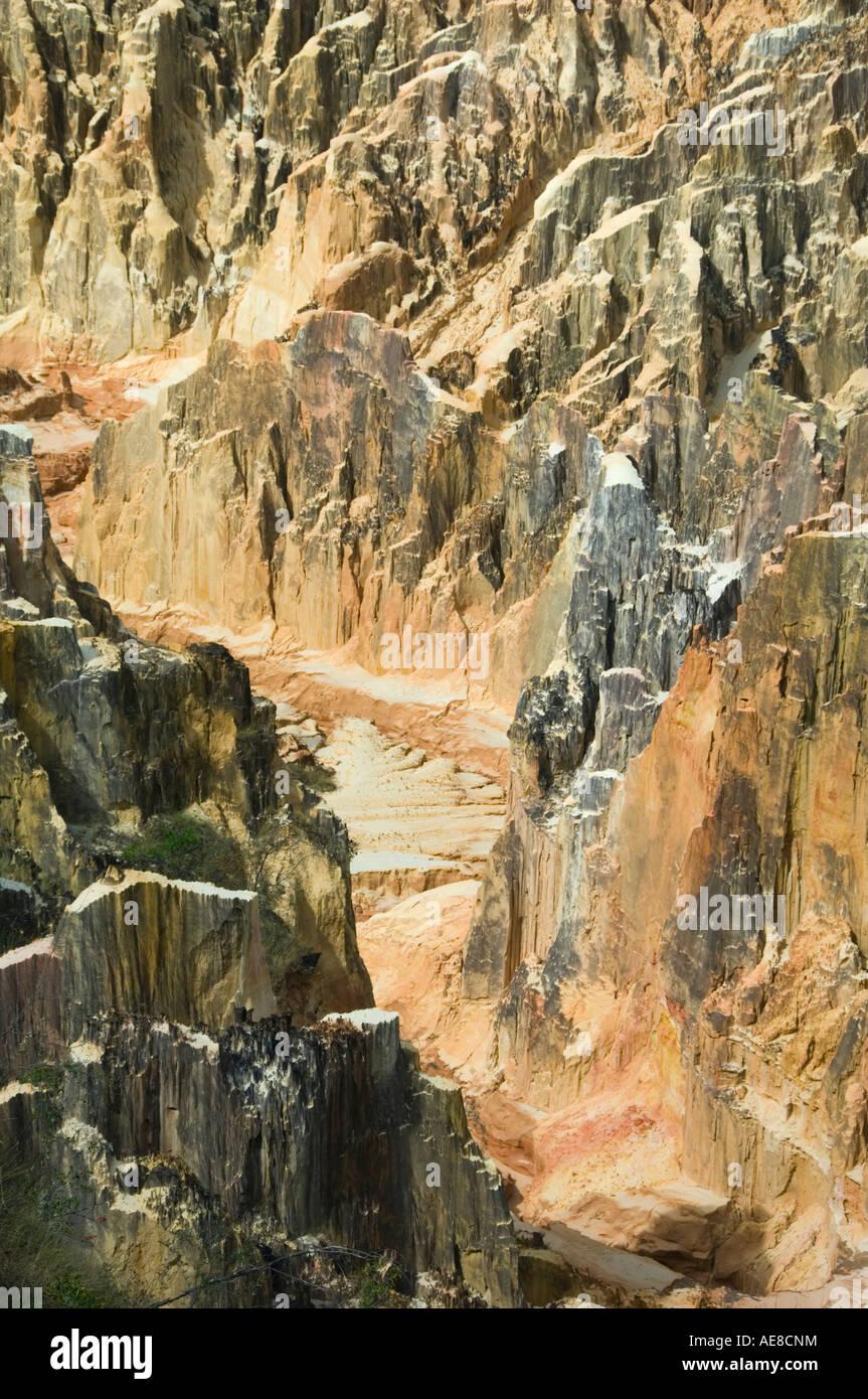 Il Lavaka o paesaggio eroso, tipicamente causato dalla deforestazione, vicino a Ampijoroa occidentale del Madagascar Immagini Stock