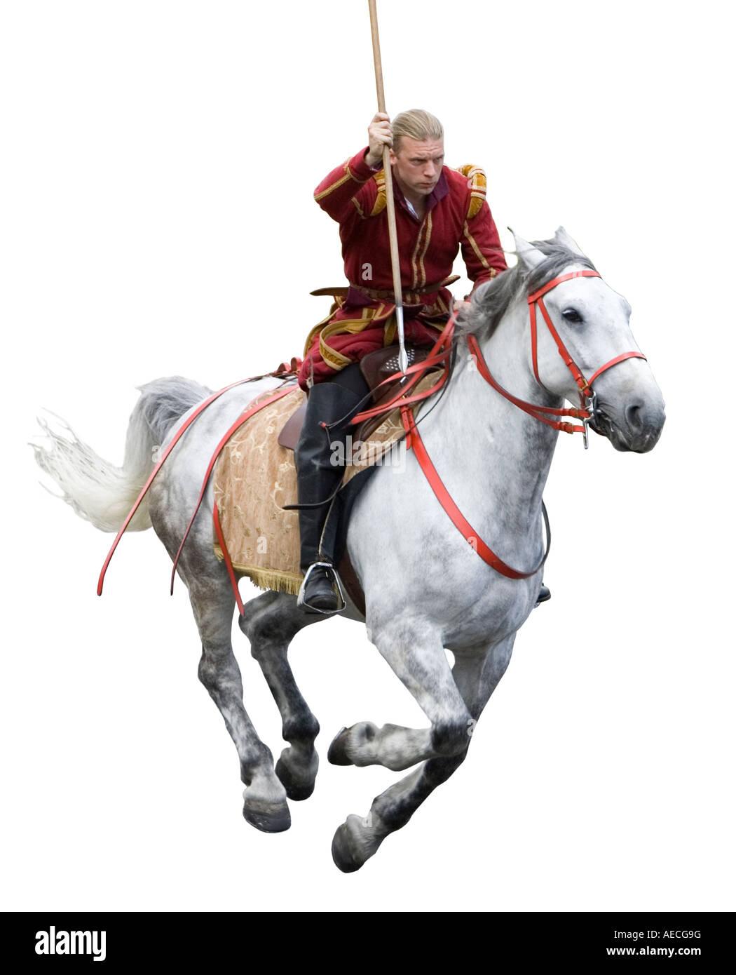 Cavaliere medioevale Immagini Stock