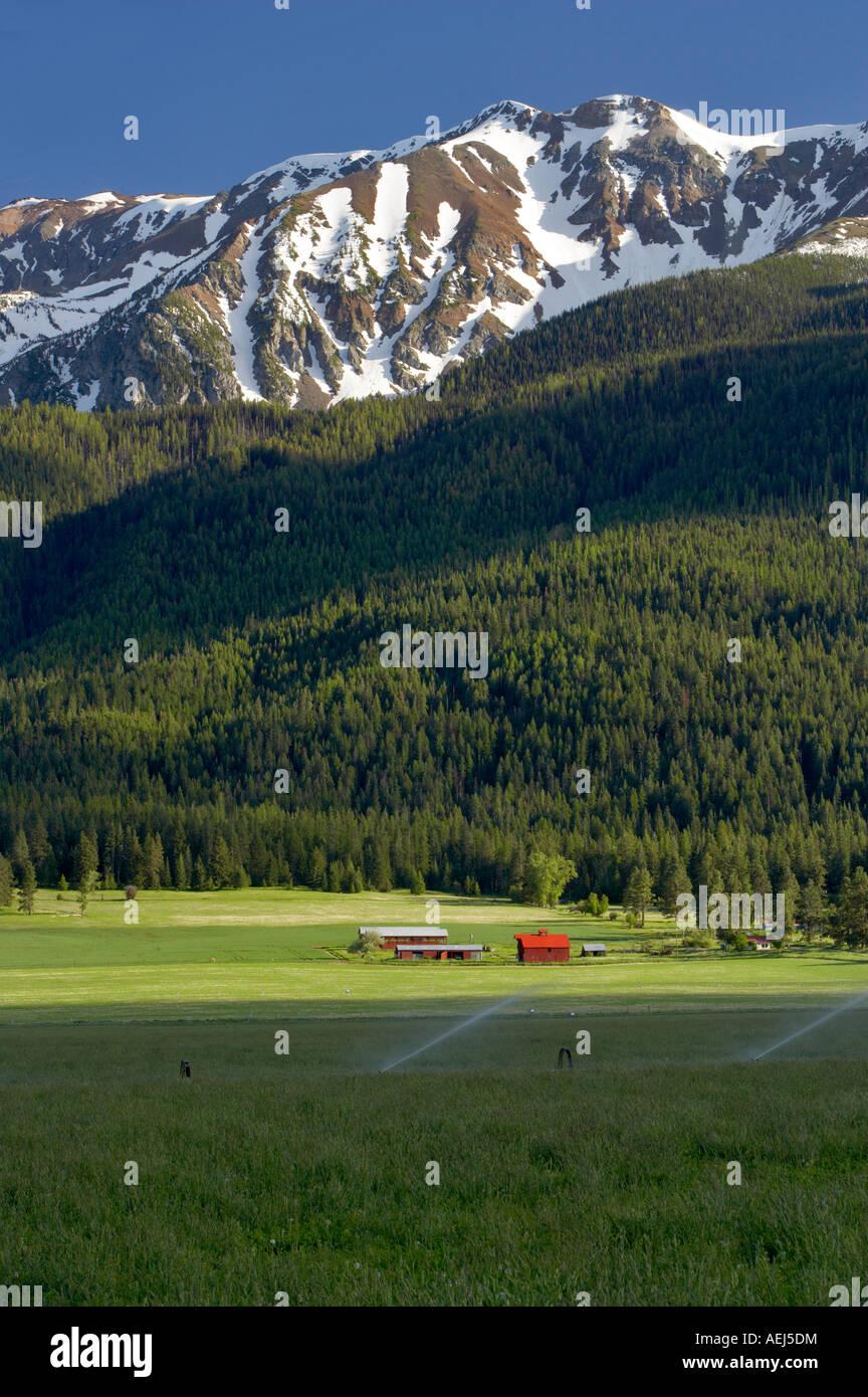 Terreni agricoli vicino a Giuseppe con fienile e montagne Wallowa Oregon Foto Stock
