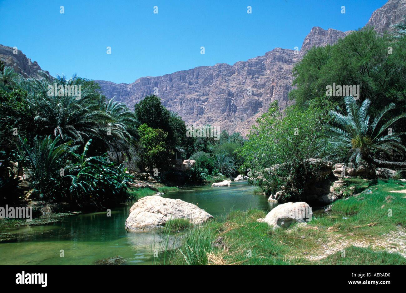 Oasi di Wadi Bani khalid Oman Immagini Stock