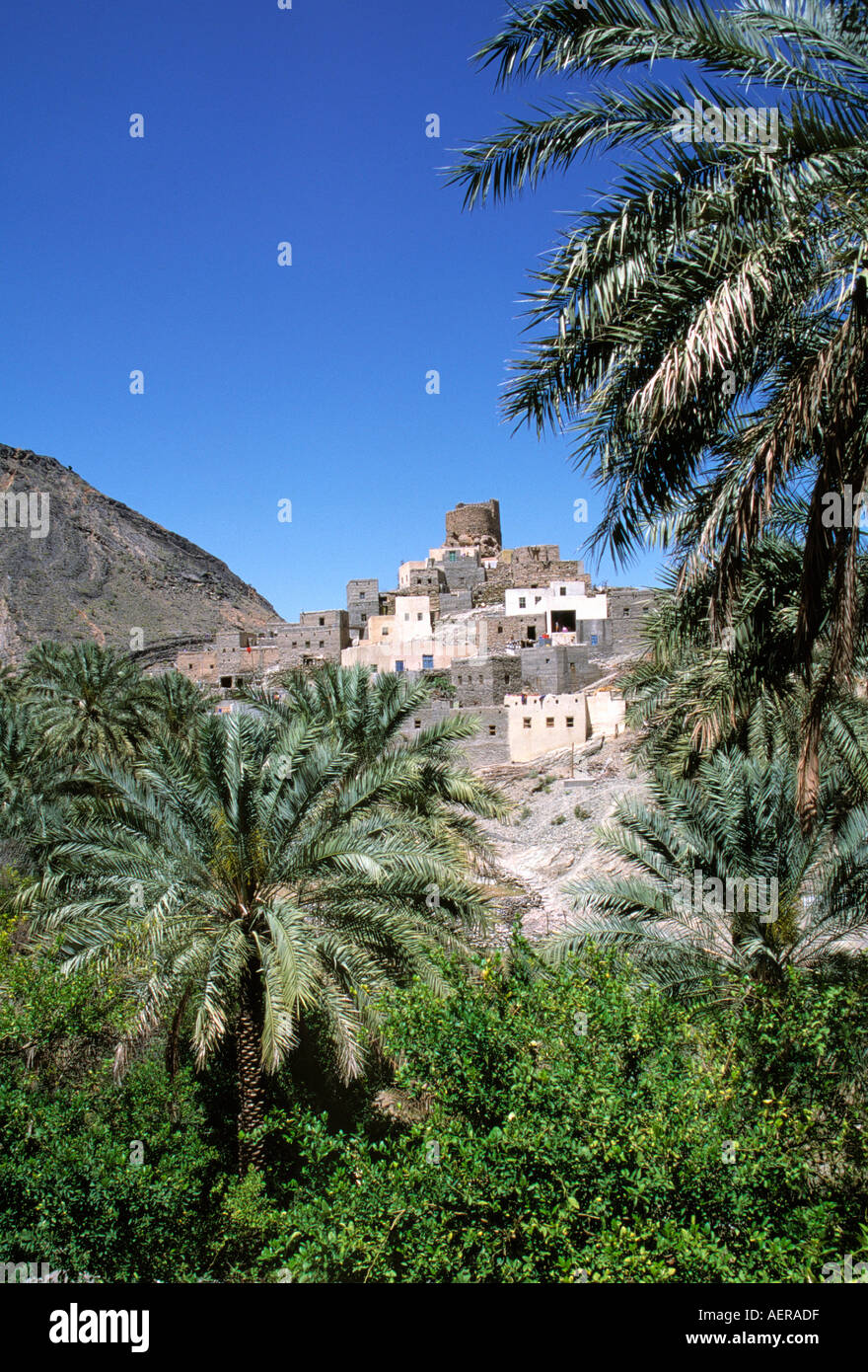 Oasi e il villaggio di Wadi Bani khalid Oman Immagini Stock