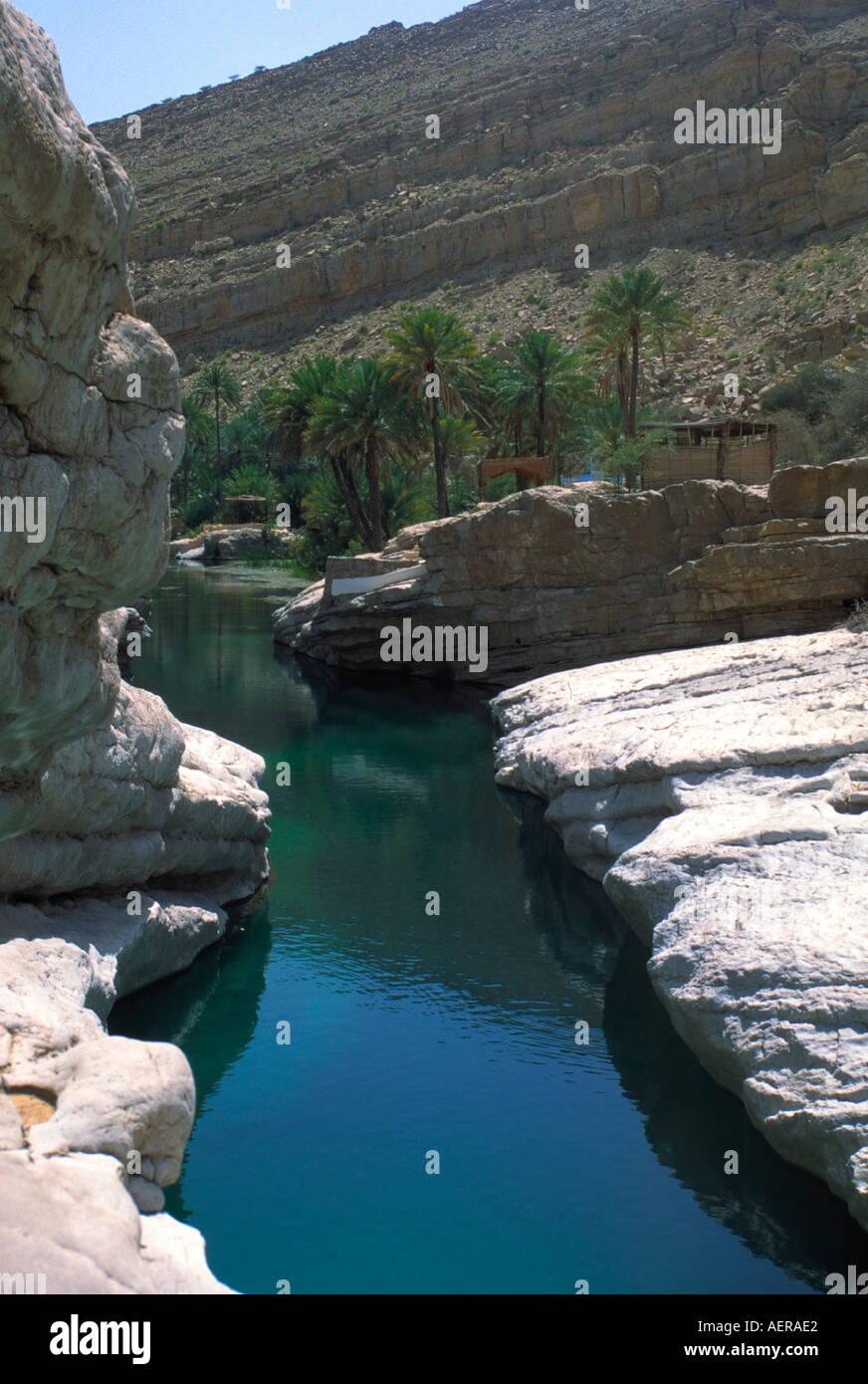Oasi vicino alla città di nizwa Oman Immagini Stock