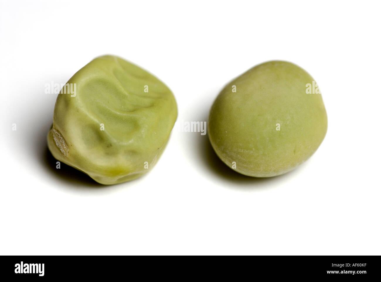 Liscio verde e rugosa i semi di pisello, tratti Gregor Mendel studiato nella sua eredità genetica esperimenti. Immagini Stock
