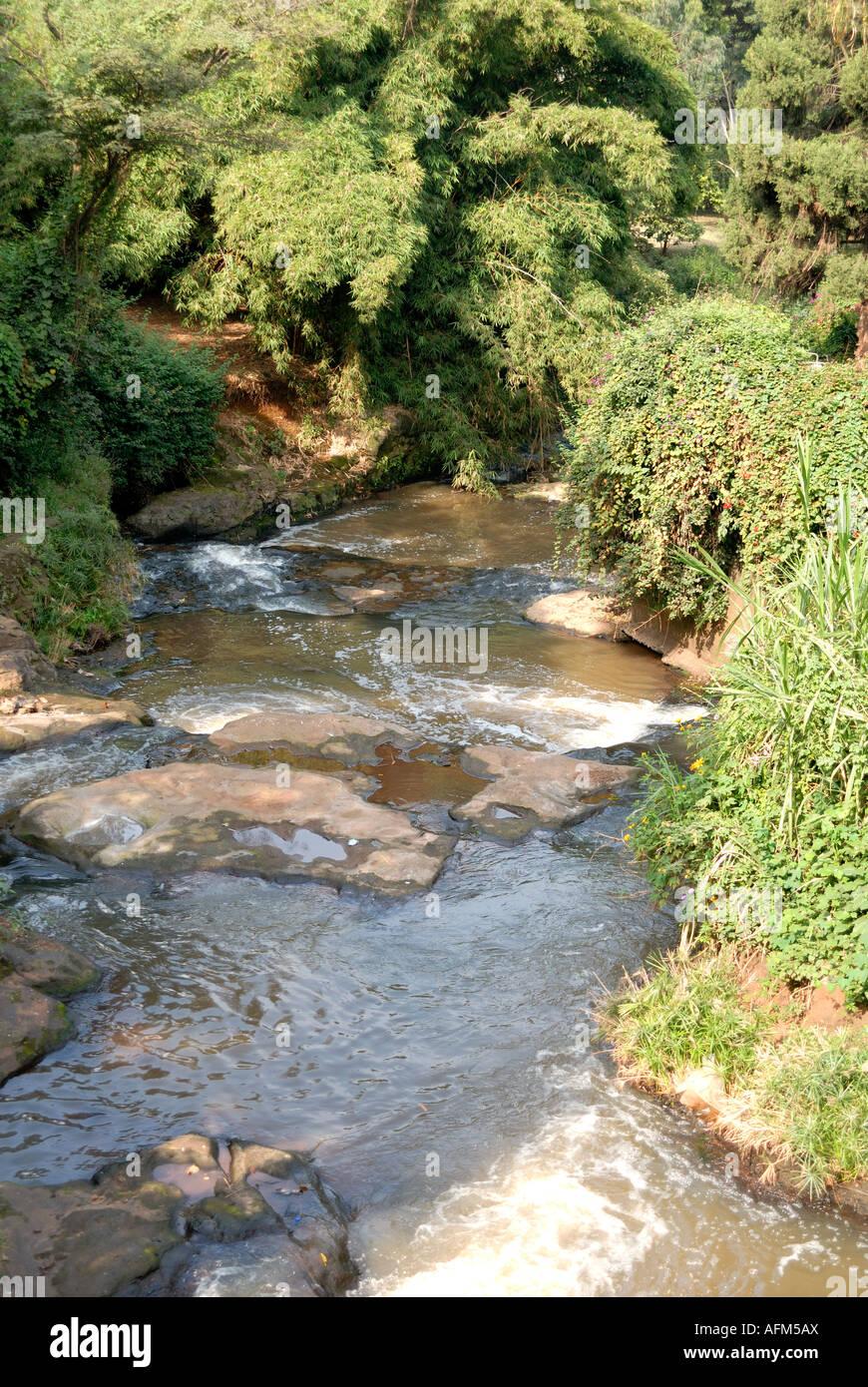 Il fiume di Nairobi o stream che ha dato il nome alla città Nairobi Kenya Africa orientale Immagini Stock