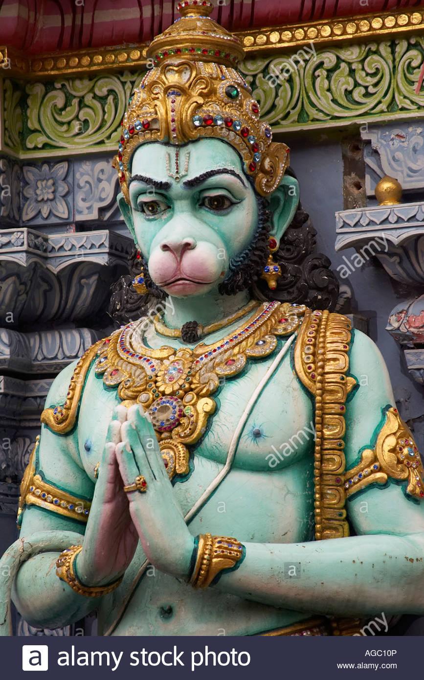 Risultati immagini per scimmia induismo