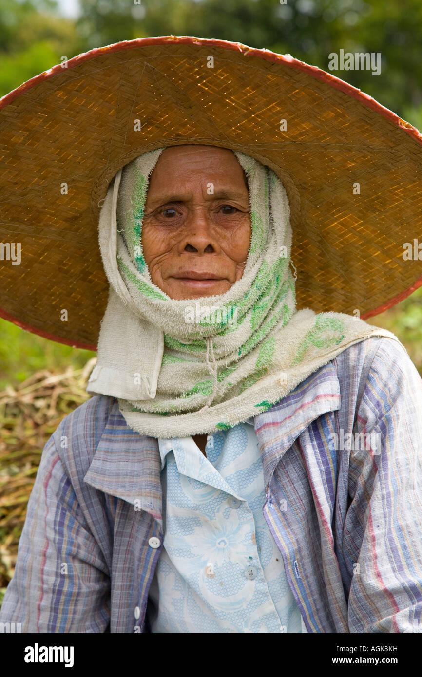 Lavoratore agricolo Chiang Mai indossando Ngohps cappello di paglia  Immagini Stock 82a3c4a5cce0