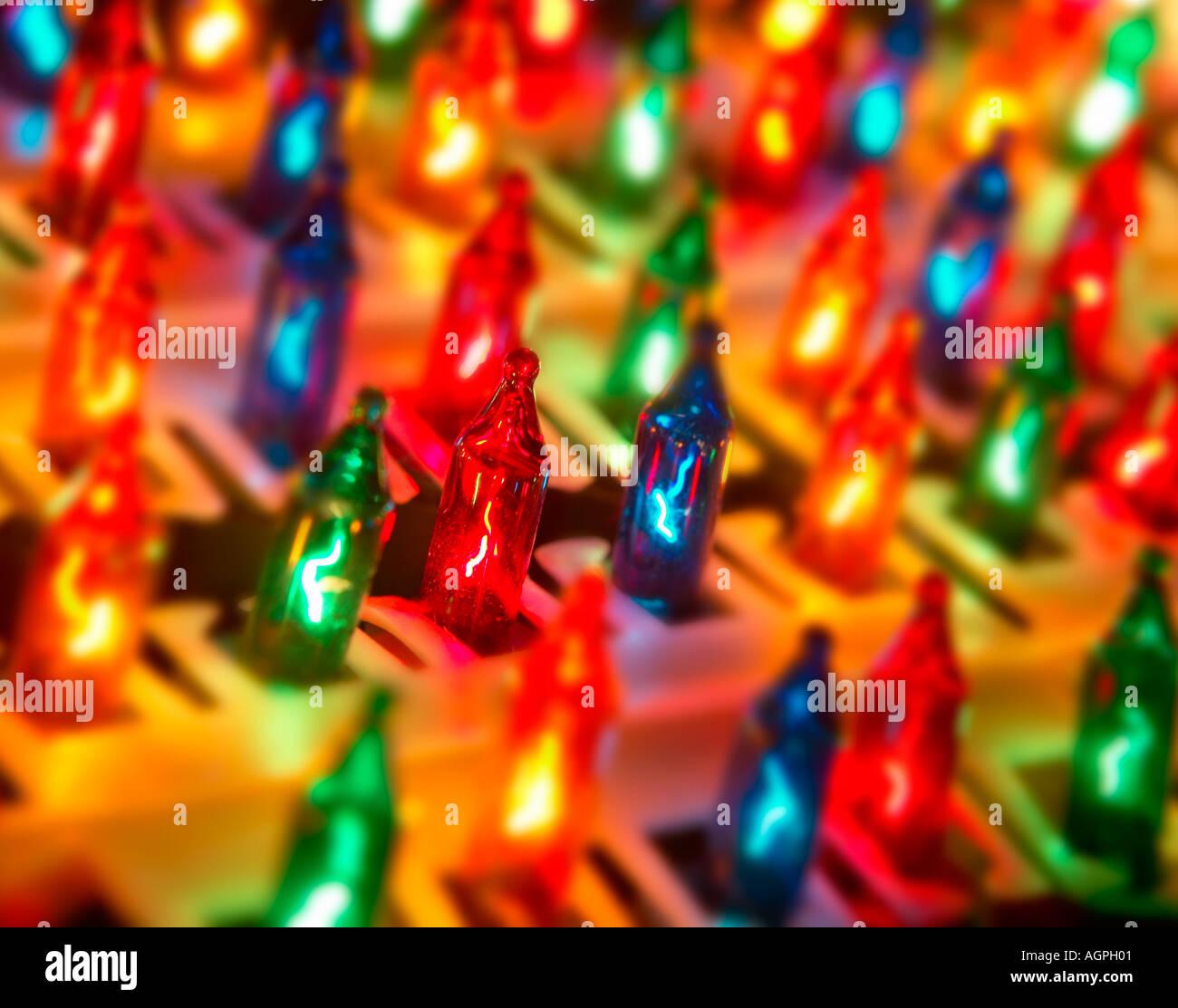 Righe di albero di Natale di luci vicine fino Immagini Stock