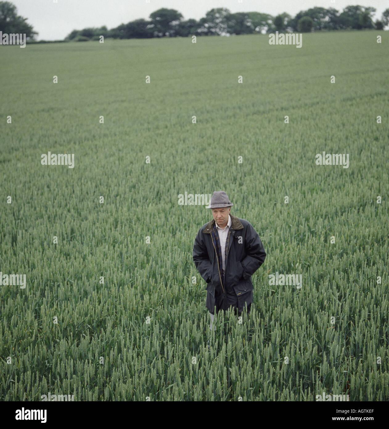 Imprenditore nel campo di grano immaturo indossando giacca di cera Immagini  Stock 264d535d9300