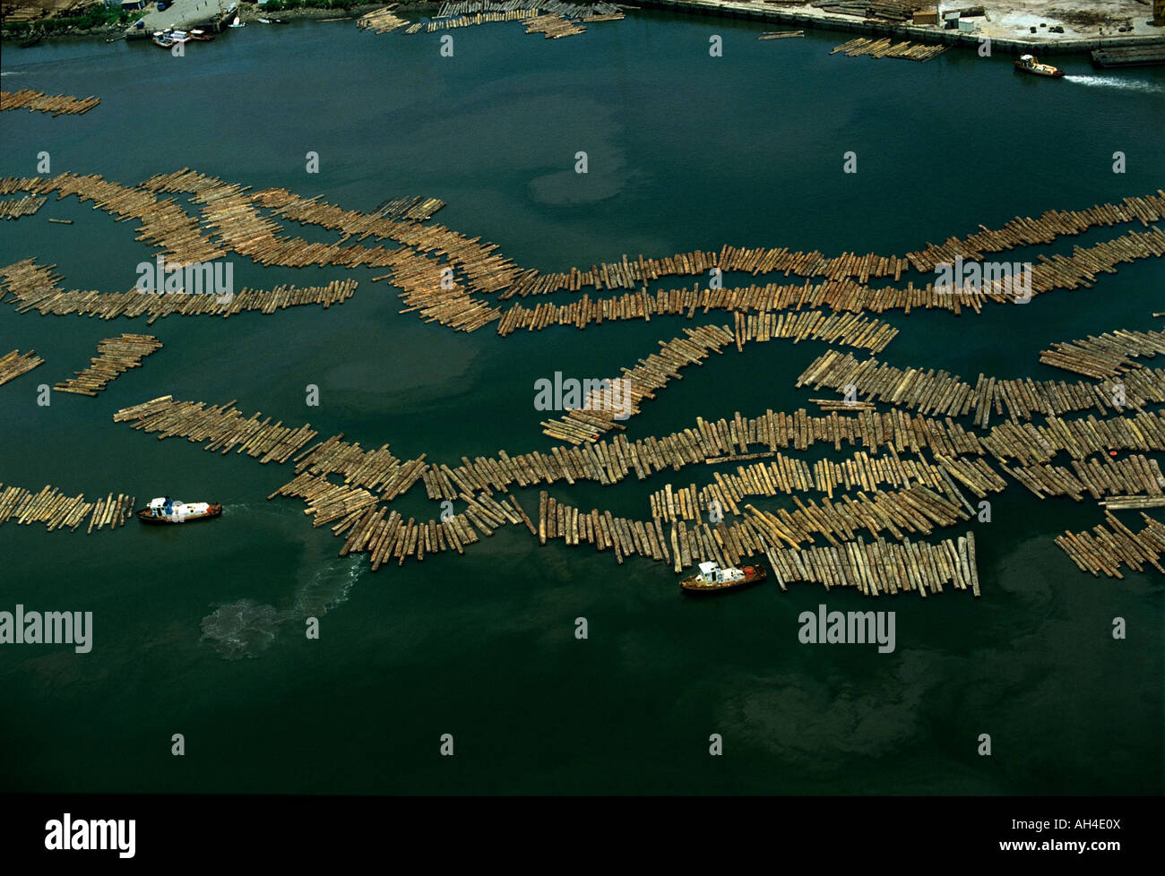 La deforestazione: legname al porto di Owendo, porto di Libreville, Gabon, Africa Immagini Stock