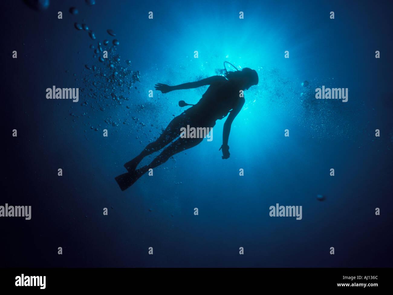 Giovane donna sub underwater Immagini Stock