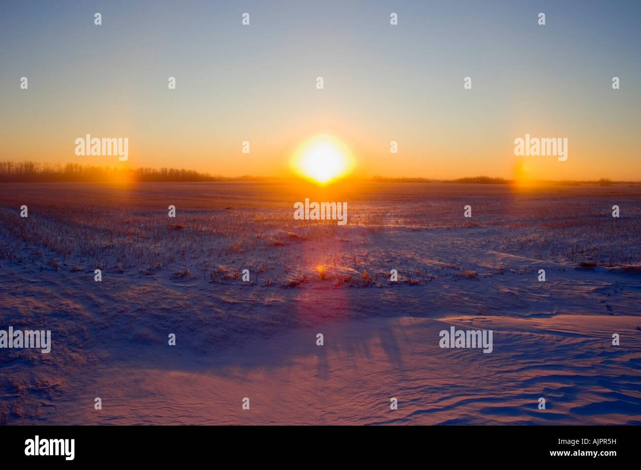 La mattina presto con coperta di neve terra Foto Stock
