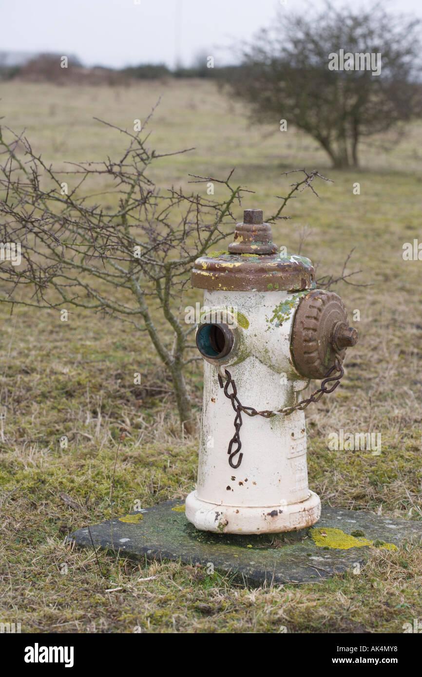 Idrante di fuoco a ex Greenham Common Air Base. Berkshire. In Inghilterra. Regno Unito. Immagini Stock