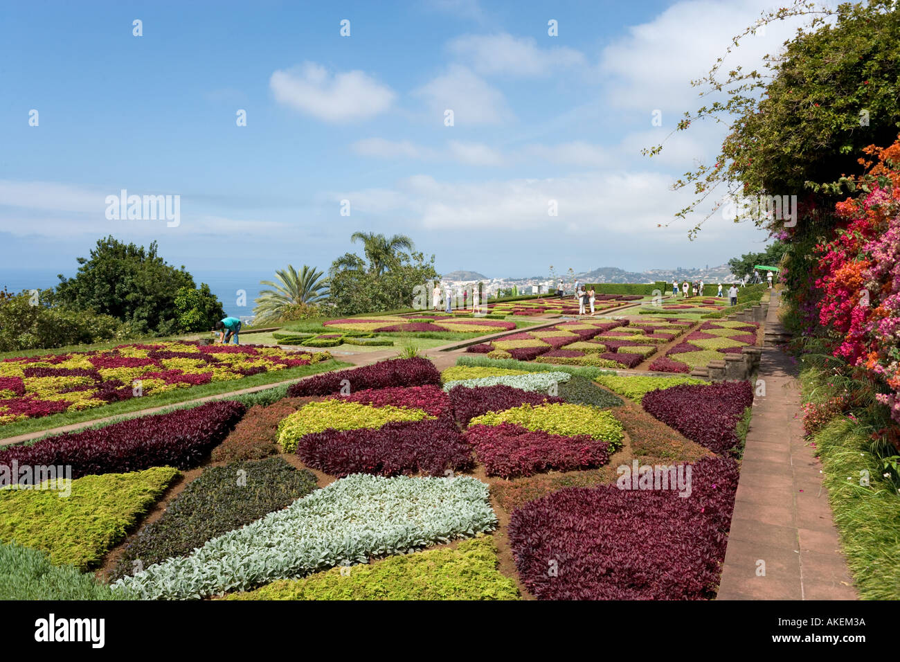 Giardini Botanici, Funchal, Madeira, Portogallo Immagini Stock
