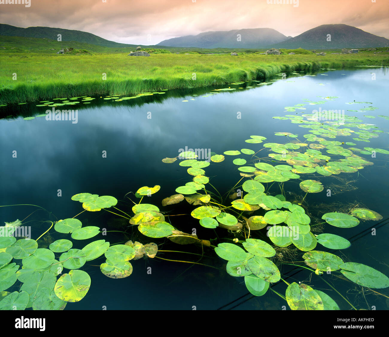 IE - Connemara: Ahalia fiume al Maam Cross Immagini Stock