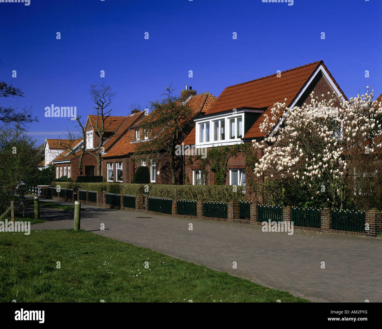 Geografia / viaggi, Germania, Bassa Sassonia, Spiekeroog, edifici, tipiche case residenziali, Additional-Rights Immagini Stock