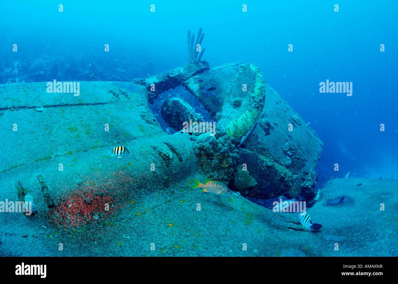 Hilma Hooker nave relitto elica Antille Olandesi Bonaire Mar dei Caraibi Immagini Stock